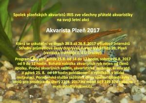 Akvarista Plzeň 2017 pozvánka Final